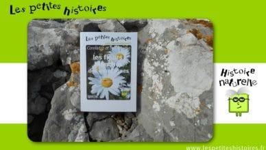 Connaitre et reconnaitre les fleurs blanches des montagnes