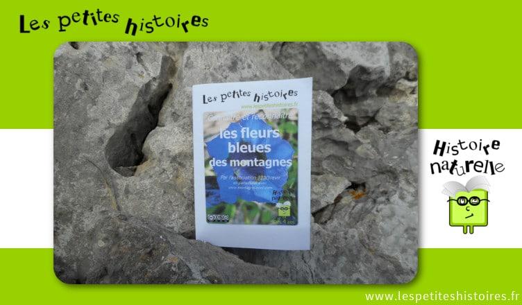 Connaitre et reconnaitre les fleurs bleues des montagnes