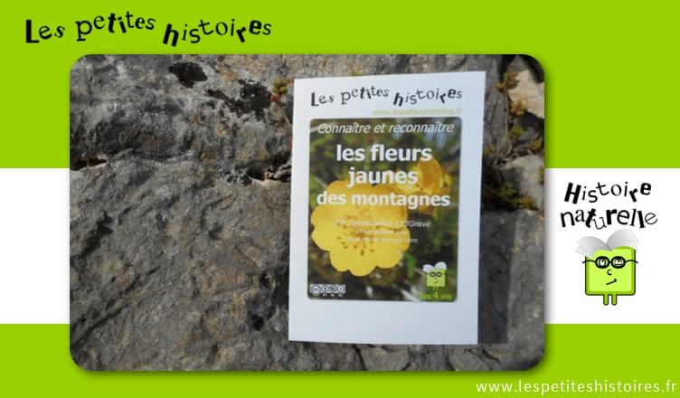 Connaitre et reconnaitre les fleurs jaunes des montagnes